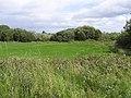 Doobally Townland - geograph.org.uk - 1431401.jpg