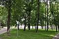 Drohobych Park XIXc RB.jpg