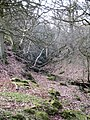 Dundale Griff - geograph.org.uk - 692703.jpg
