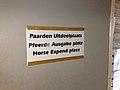 Dunglish.jpg