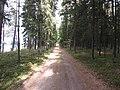 Dusetų sen., Lithuania - panoramio (130).jpg