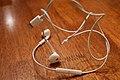 Earbud wires.jpg