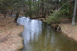 East Branch Raven Creek looking downstream from Pennsylvania Route 239 2.JPG