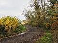 East Lothian glaur, The road passing Beanston Mains - geograph.org.uk - 2134669.jpg