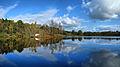 Ecromagny, l'île de l'étang du Pré aux Lièvres.jpg