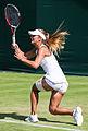 Edina Gallovits-Hall 4, 2015 Wimbledon Championships - Diliff.jpg