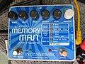 Electro-Harmonix Stereo Memory Man with Hazarai.jpg