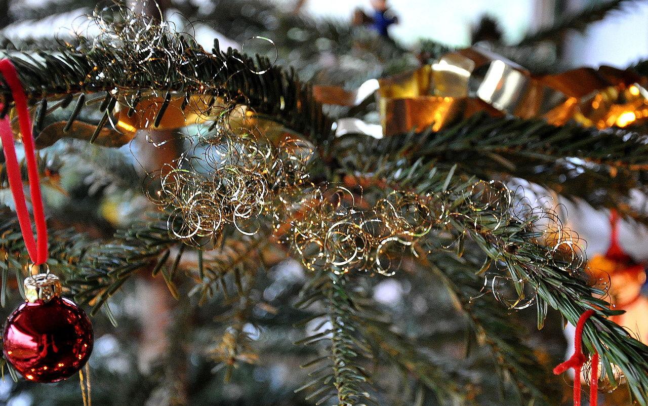 Weihnachtsbaum Engelshaar.File Engelshaar Jpg Wikimedia Commons