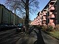 Erlen-Ulmenhof.jpg