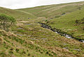 Erme valley near Downing's House.jpg