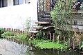 Escaleras canales Xochimilco.JPG