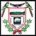 Escudo del distrito de Damaso Beraun.jpg