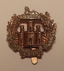 Essex Regiment Cap Badge.jpg