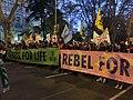 Extinction Rebellion - Marcha por el Clima 6 Dec Madrid -COP25 IMG 4341 (49182787811).jpg