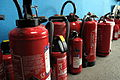 Extinguishers with cubs IMG 4847.JPG