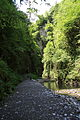FR64 Gorges de Kakouetta7.JPG
