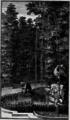 Fable 32 - La Souris, le Chat & le petit Coc - Le Labyrinthe de Versailles - page 111.png