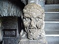 Face - panoramio - Tanya Dedyukhina.jpg