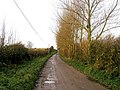 Farm Track - geograph.org.uk - 287786.jpg