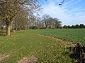 Farmland, Parmoor - geograph.org.uk - 722365.jpg
