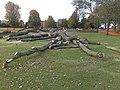 Felled Poplars - geograph.org.uk - 1550701.jpg