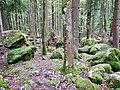 Felsenmeer in der Nähe vom Bannwald Untereck - panoramio (1).jpg