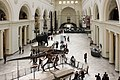 Field Museum main hall, March 2017.jpg
