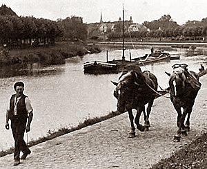 Narrowboat - Boat drawn by horses on a towpath in 1880's Germany.