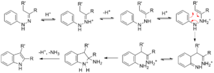 Fischer indole synthesis - The mechanism of the Fischer indole synthesis