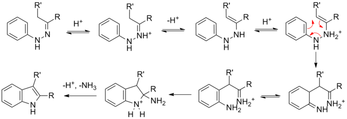 Fischer Indole Synthesis Wikivisually