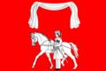Flag of Ilinskoe (Novopokrovsky rayon).png