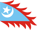 Flag of the Republic of East Turkestan (alternate coin version).png