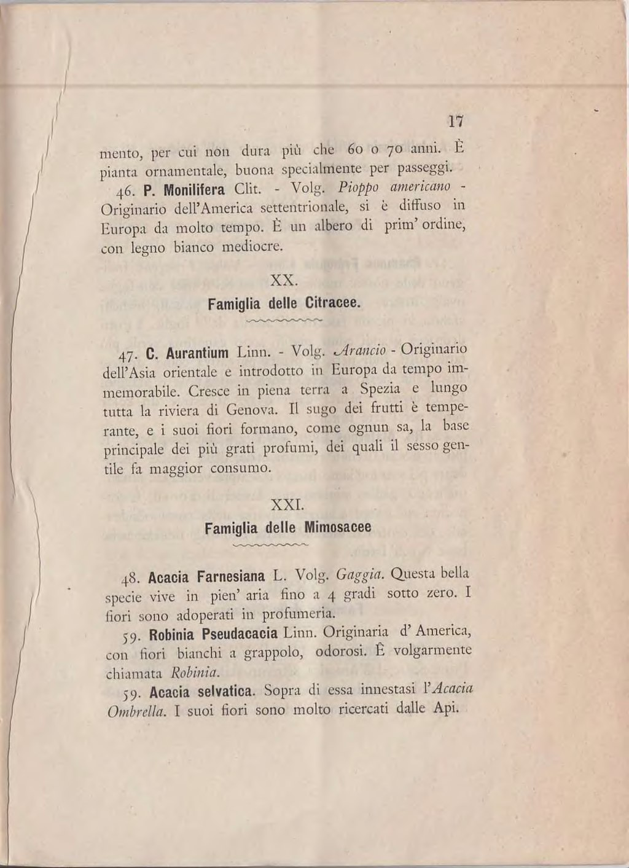 Paginaflora Dei Giardini Pubblici E Viali Di Speziadjvu17