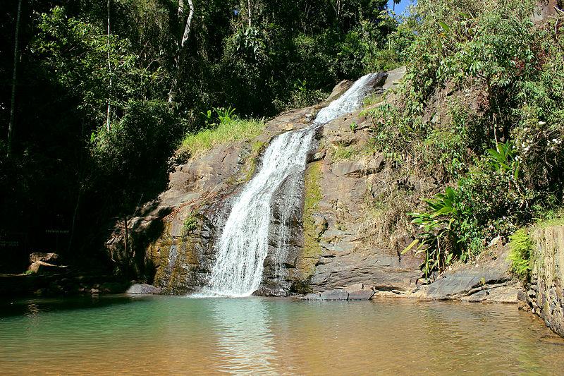 File:Floresta Municipal Passa Quatro 03.JPG