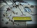 Flowers - panoramio (22).jpg