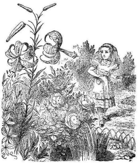 Flowers frontispiece.jpg