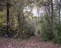 Following the Appalachian Trail LCCN2011630545.tif