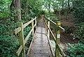 Footbridge across a small stream near Norman's Cottage's - geograph.org.uk - 1492986.jpg