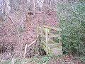 Footbridge near the B2169 - geograph.org.uk - 1658771.jpg