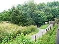Footpath alongside the railway - geograph.org.uk - 1985625.jpg