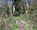 Footpath to Ridge - geograph.org.uk - 742349.jpg