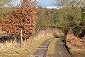 Footpath towards Haw Farm - geograph.org.uk - 1166901.jpg