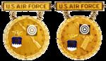 Former USAF Gold National EIC Badges.png