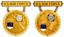 Former USAF Gold National EIC Badges.png