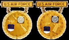 Ex-USAF Gold National EIC Badges.png