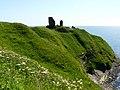 Forse Castle. - geograph.org.uk - 1365174.jpg