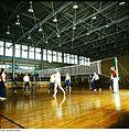 Fotothek df n-32 0000076 Sport, Volleyball-Mannschaft.jpg
