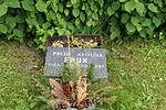 Freiheitskämpfergrab 14.JPG