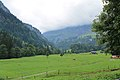 From Klöntal to Schwyz via Muotathal - panoramio (2).jpg