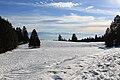 Fruitières de Nyon in winter - panoramio (51).jpg